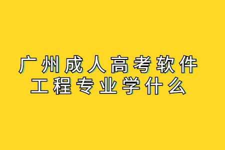 广州成人高考软件工程专业学什么